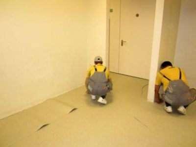 Як постелити лінолеум на бетонну підлогу