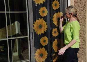 Як Встановити Москітну Сітку На Двері